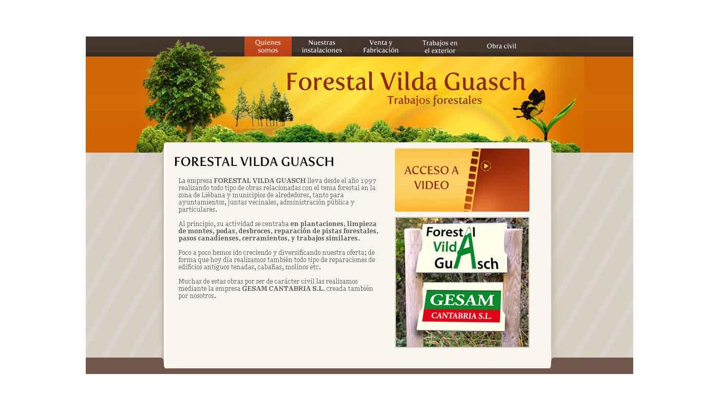 Página web Vilda Guash