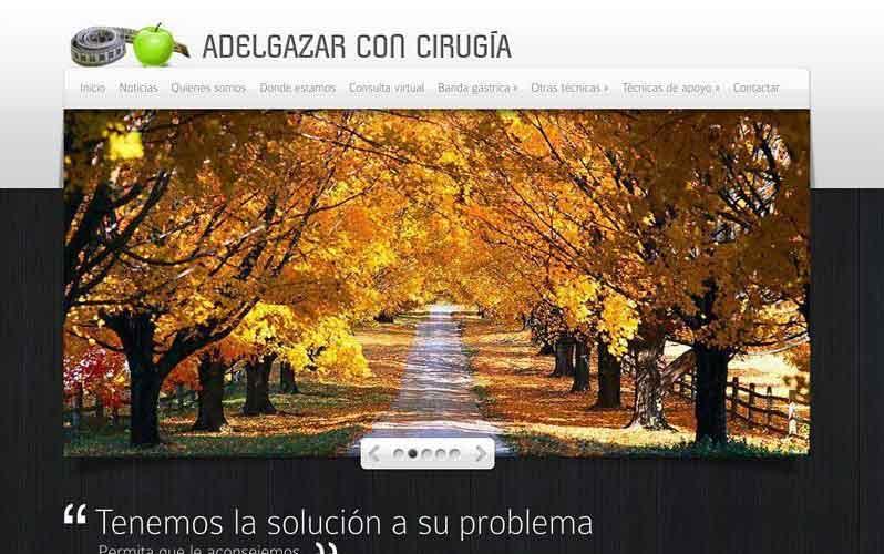 Diseño web Adelgazar con cirujía
