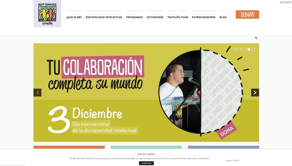 Diseño web Best Buddies