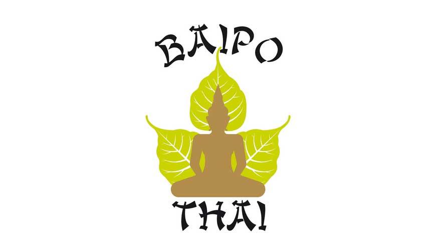 Baipothai. Migración y mantenimiento web