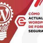 Actualizar WordPress: Guía paso a paso para no morir en el intento